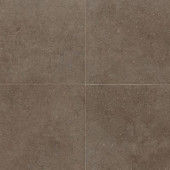 City View Neighborhood Park 18 in. x 18 in. Porcelain Floor and Wall Tile (10.9 sq. ft. / case)