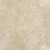 12 in. x 12 in. Sandune Beige Marble Floor and Wall Tile-DISCONTINUED