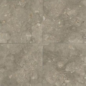 Caspian Shellstone 12 in. x 12 in. Natural Stone Floor and Wall Tile (10 sq. ft. / case)-DISCONTINUED