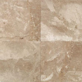 Natural Stone Collection Cedar Oniciata 12 in. x 12 in. Marble Floor and Wall Tile (10 sq. ft. / case)