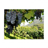 Vineyard4 18 in. x 24 in. Tumbled Marble Tiles (3 sq. ft. /case)