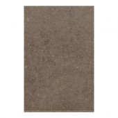 City View Neighborhood Park 12 in. x 24 in. Porcelain Floor and Wall Tile (11.62 sq. ft. / case)