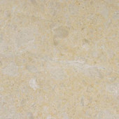 Desert Sand 12 in. x 12 in. Polished Marble Floor and Wall Tile (10 sq. ft. / case)