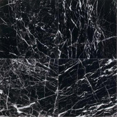 Natural Stone Collection China Black-Polished 12 in. x 12 in. Marble Floor and Wall Tile (10 sq. ft. / case)