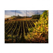 Vineyard3 18 in. x 24 in. Tumbled Marble Tiles (3 sq. ft. /case)