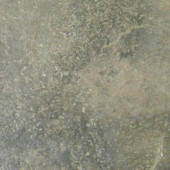 Terra 12 in. x 12 in. Bengal Slate Porcelain Floor and Wall Tile (15 sq. ft. / case)-DISCONTINUED