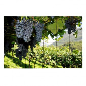 Vineyard4 36 in. x 24 in. Tumbled Marble Tiles (6 sq. ft. /case)
