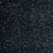 Black Galaxy 18 in. x 18 in. Polished Granite Floor and Wall Tile (9 sq. ft. / case)