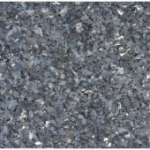 Blue Pearl 12 in. x 12 in. Polished Granite Floor and Wall Tile (10 sq. ft. / case)